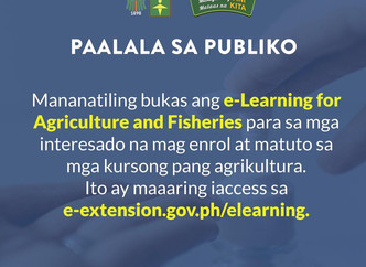 LEARN FARMING FROM HOME: DA AGENCY OFFERS FREE AGRICULTURE E-COURSES YVETTE TAN AGRIBUSINESSCOMMUNIT