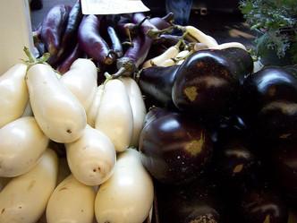 No GMO crop trials in Philippines says Supreme Court