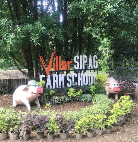 Rice Harvest at Villar SIPAG Farm School Bacoor with PhilMech