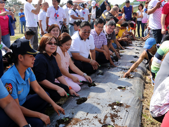 SAGIP BUKAS: A Community-based Drug Rehabilitation Program through Agriculture, Villar SIPAG FARM SC