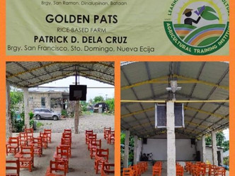 Donation of 50 plastic school chairs to GOLDENPATS Rice-Based Farm in Brgy.San Francisco,Sto.Domingo