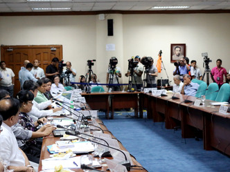 Senate Hearing Conclusion on Coconut Infestation