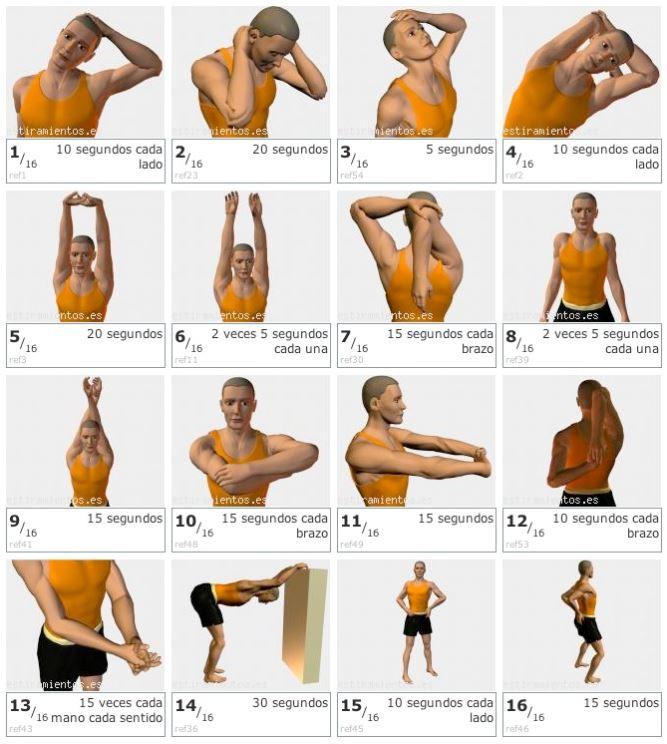 ejercicios-contracturas.JPG