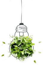 stock-photo-energy-saving-eco-lamp-made-