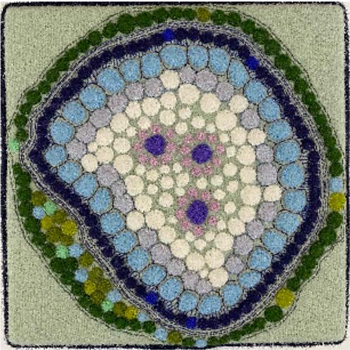 Artist: Teresa Shields, Title: Green Appliqué Cell Structure