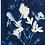 Thumbnail: Artist: Emie Hughes, Title: My Mother's Garden