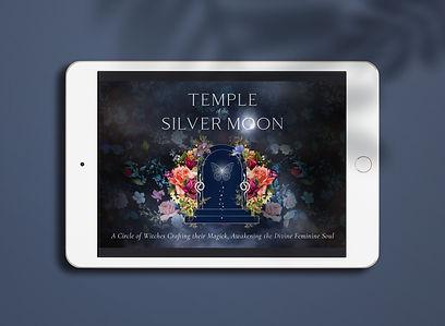 SilverMoon_FacebookGroup_Mockup.jpg