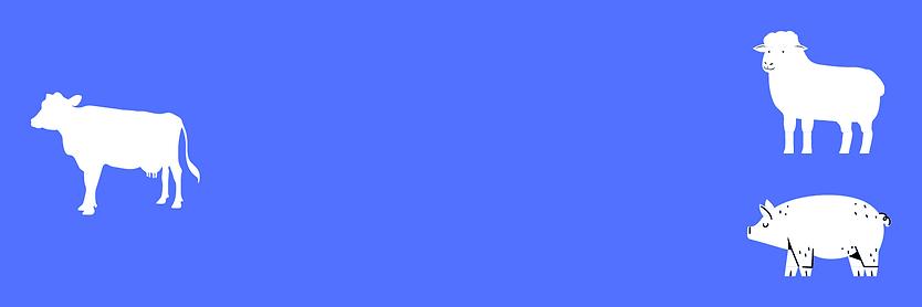 Dark Blue Thanksgiving Day Twitter Heade