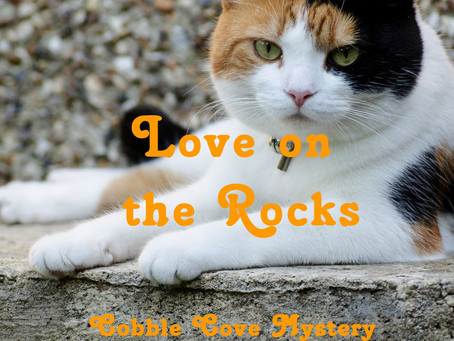 Book Spotlight: Love on the Rocks by Debbie De Louise + BONUS