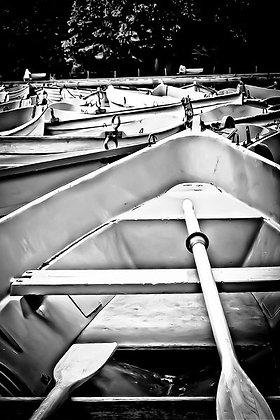Rowing boats (3) - Lac du Bois de Bologne