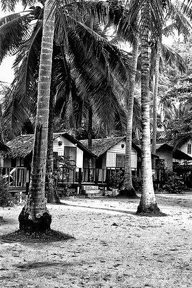 Palms over Koh Samui - Spa Chaweng