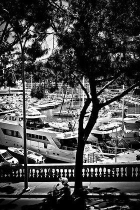 Yachts galore - Monte Carlo