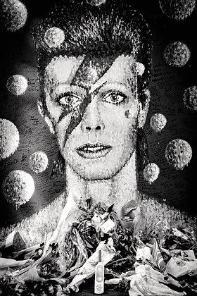 Bowie Love