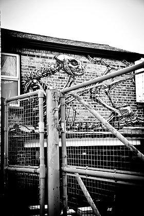 Alien in the doldrums - EastDulwich