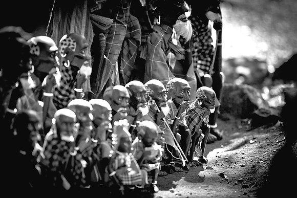 Like a gathering of wise elders - Nairobi Kenya