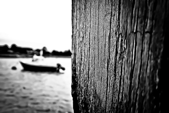 Nautical nature - Selsey/Pagham Harbour (3)