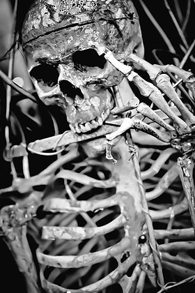 Just call him 'Bones' - Halloween on the Southbank
