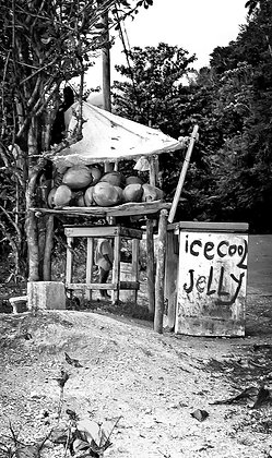 Ice Cool Jelly Roadside  - Nr Manchioneal