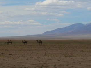 Integrated Interpretation of seismic, FTG and HRAM, southern Mongolia
