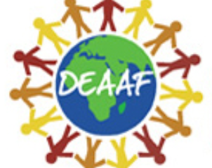 Organizational Spotlight: Deaf Education and Arts for African Families