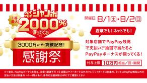 宝くじ・PayPay・1000%