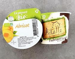 yaourt abricot adelle.jpg