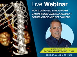 [Live] HDVI: How Computed Tomography Can Improve Case Management for Practice and Pet Owners
