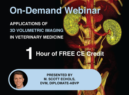 [On-Demand] The Applications of HDVI in Veterinary Medicine Webinar: Earn 1 Hour of *CE Credit.