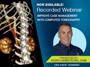 [Recorded Webinar Available Now] How CT Can Improve Case Management for Practice and Pet Owners