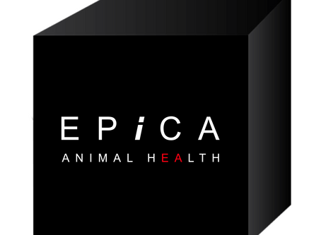 Epica™ Launches                          Epica Animal Health Rebrand