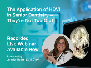 [Recorded Webinar Available Now] HDVI: Senior Dentistry They're Not Too Old