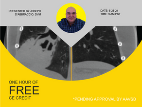 [Live] HDVI: A New Standard of Care Using HDVI