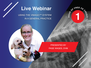 [Live] HDVI: Using the Vimago™ System in a General Practice - At Care First Animal Hospital
