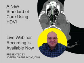 [Recorded Webinar Available Now] A New Standard of Care Using HDVI - At Catskill Veterinary Services