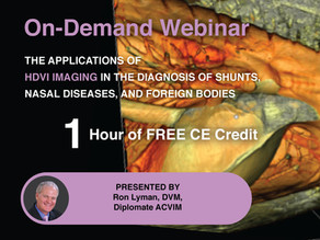 [On-Demand] The Applications of HDVI in the Diagnosis of Shunts, Nasal Diseases, and Foreign Bodies