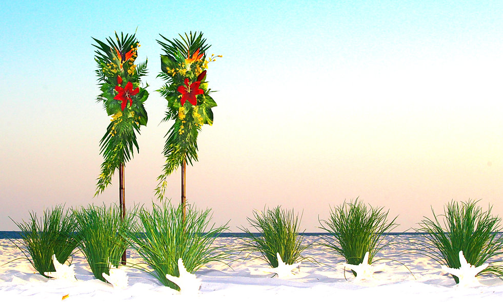 beachwedding-island-romance-IMG_2698.jpg