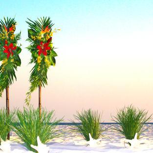 ISLAND ROMANCE BEACH DREAM WEDDING