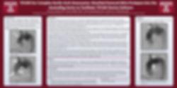 Dr. Grayson Wheatley Endovascular Research Poster TEVAR SCAI Cardiac Surgery