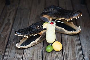 Alligator-Slammer-Cowpokes-Watering-Hole
