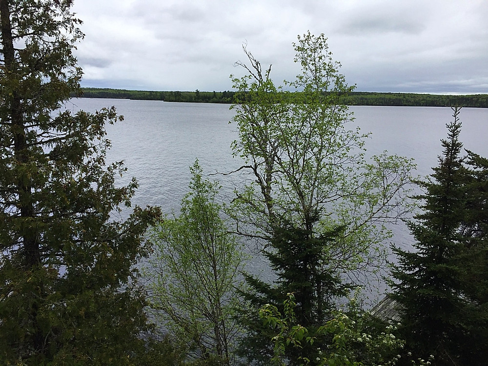My view from the cabin. Long Bow lake.
