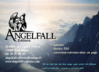carte visite angelfall bis services.jpg