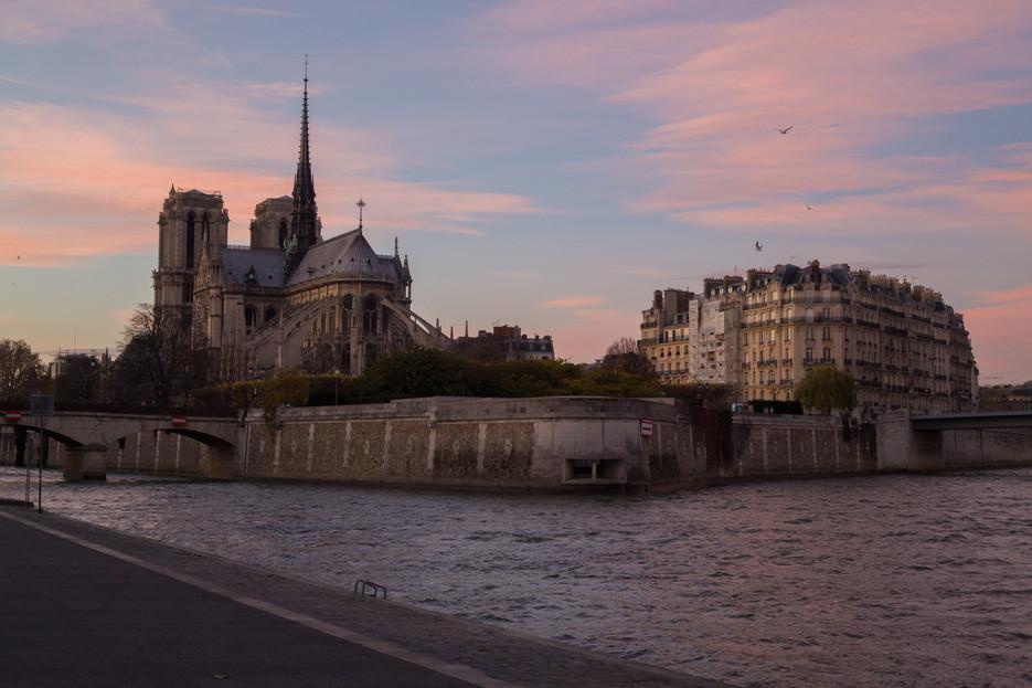 Paris-6676.jpg