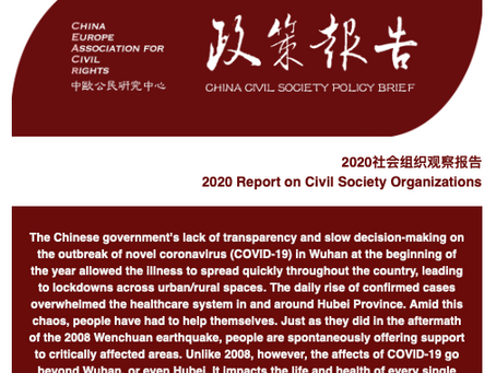 2020 Report on Civil Society Organizations