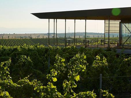Best Wine Destinations - Must visit!