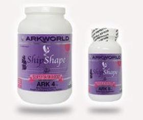 Ark4ShipshapePic3.JPG