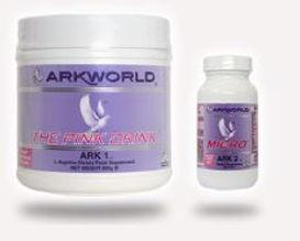 Ark1PagePic3.JPG