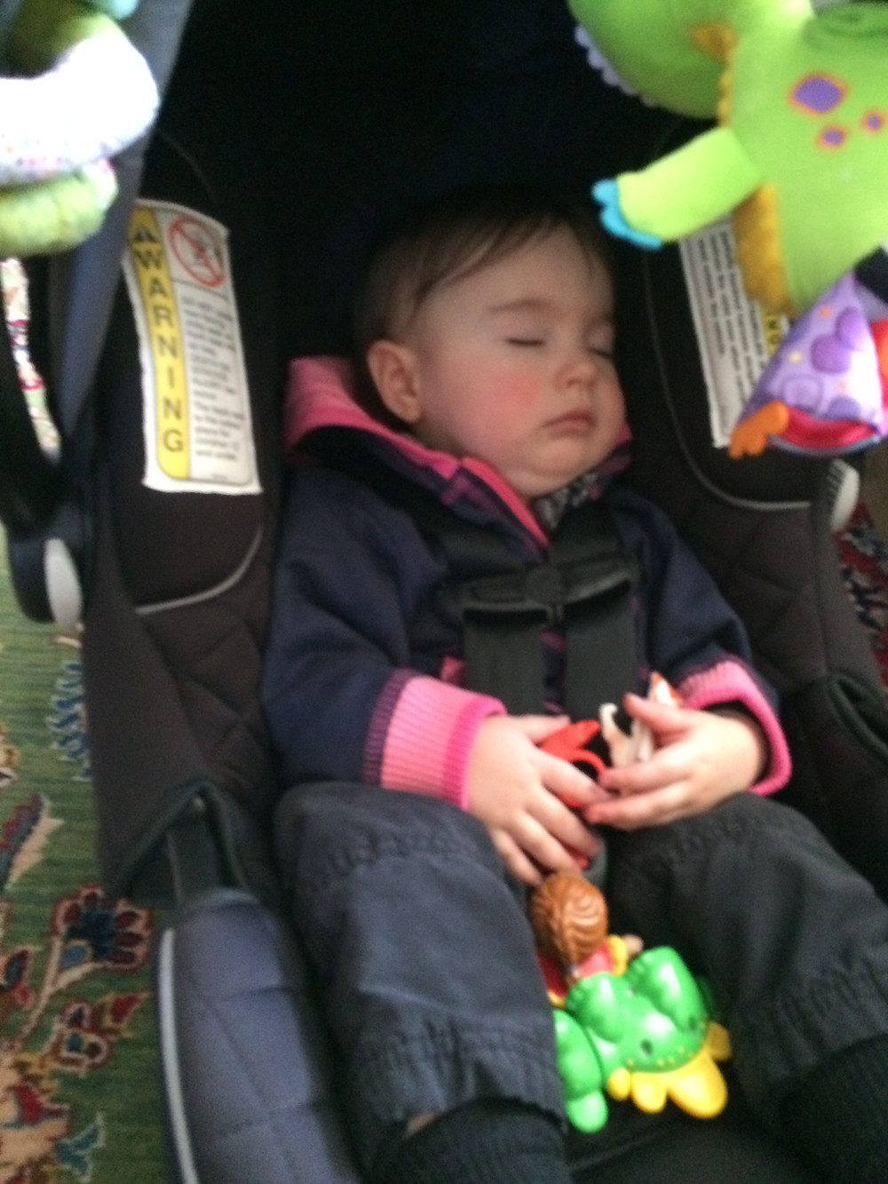 Picture of baby asleep in a car seat holding toy dinosaur.