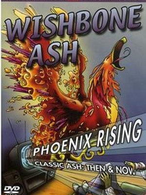 WISHBONE - PHOENIX RISING DVD