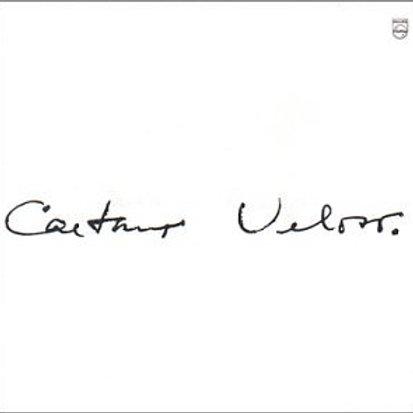 CAETANO VELOSO - 1969 LP