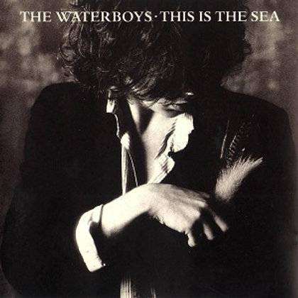 THE WATERBOYS - THIS IS SEA CD